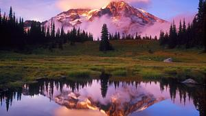 Slike-nature.jpg