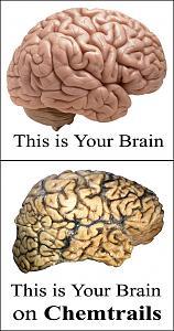Chemtrails: Globalni zločin-brain-image.jpg
