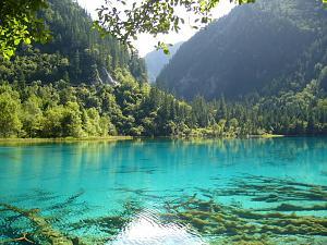 Orgoniziranje naše okoline, darivanje i sl...-nature.jpg